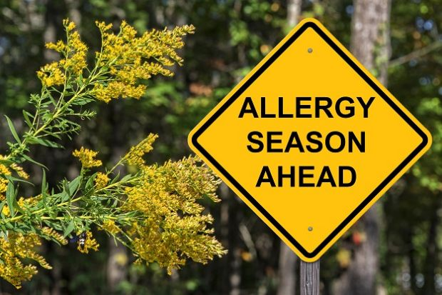 Patients with hayfever can download an app to track symptoms