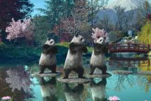 Sudocrem's TV advert features three pandas